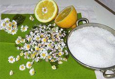 Na sedmikráskový sirup potřebujete jen květy sedmikrásek, 1 citron, cukr a....