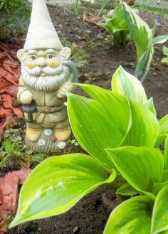 lumiukon puutarhassa, puutarhatonttu