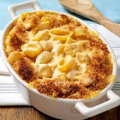 Cheesy Chicken 'n' Shells Recipe -When our friend served us this entree, I asked her for the recipe right away. It was so good, I thought I would share it with others. I cut the recipe down for a meal or two, but it can easily be doubled or tripled. —Jodee Harding, Mount Vernon, Ohio