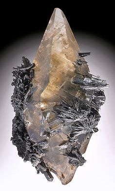 Golden Calcite crystal with Stibnite