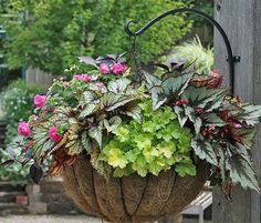 How to Create Sensational Pots and Planters…also a list for choosing the right plants, which ones prefer sun, shade etc