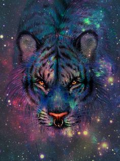 space tiger - Google Search