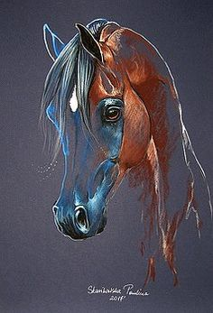 Bay arabian horse by Paulina Stasikowska