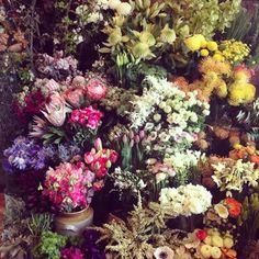 Melbourne, Beautiful Flowers, Floral Design, Floral Wreath, Instagram Images, Wreaths, Photo And Video, Drawings, Plants