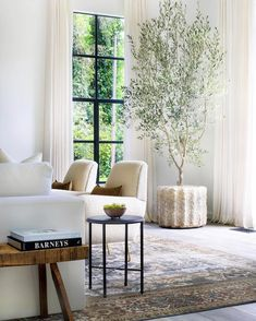 neutral modern living room with This olive tree + window moment deserves all the… neutrales modernes Wohnzimmer mit diesem Olivenbaum + Fenster Moment verdient alle guten Emojis. Rugs In Living Room, Home And Living, Living Room Furniture, Living Room Designs, Living Room Decor, Living Spaces, Modern Living, Living Room With Plants, Neutral Living Rooms
