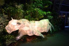 surrounding African Animal décor