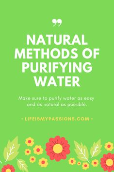 Make sure to purify water as easy and natural as possible Vegan Vitamins, Water Benefits, Water Life, Healthier You, Healthy Options, Natural Medicine, Survival Skills, Drinking Water, Healthy Drinks