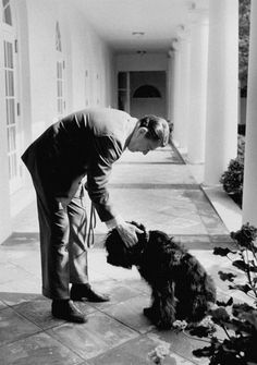 President Ronald Reagan pauses outside the White House to pet his dog Lucky in 1986. Lucky was a Bouvier des Flandres, a Flemish breed originally developed for cattle droving and sheep herding