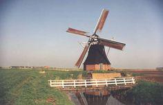 Google Afbeeldingen resultaat voor http://www.sleutelstad.nl/public/images/248393000.812497-Molen.jpg