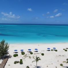 Welcome to the The Venetian on Grace Bay. Discover our luxury resorts, amenities, bed room suites, island, and beach photo galleries. Grace Bay Beach, Turks And Caicos, Island Life, Beach Photos, More Photos, Venetian, Swimming Pools, Caribbean, Photo Galleries