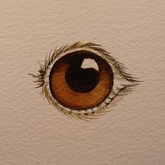 Painting Eyes | Step By Step Watercolor