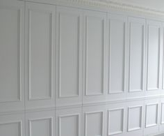 Wall paneling hidden storage