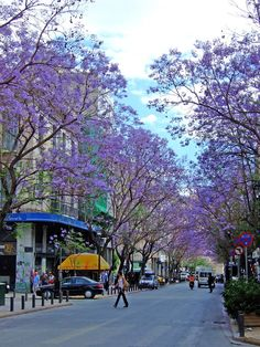athinas street in springtime ,  greece  http://athensville.blogspot.com/