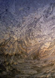 Morning light through the frost on the windshield January 14, 2014
