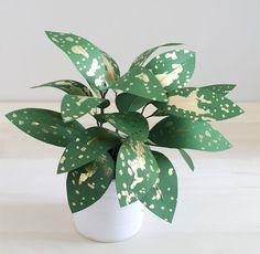 Plantas de papel criadas por Corrie Hogg + DIY!