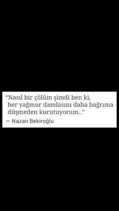 Nasıl bir çölüm şimdi ben ki ... Nazan Bekiroğlu