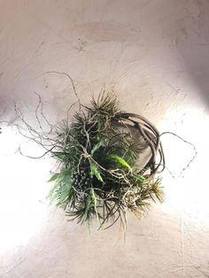 Christmas Flowers, Christmas Mood, Christmas Wreaths, Christmas Decorations, Christmas Ornaments, Dried Flower Arrangements, Dried Flowers, Diy Wreath, Ikebana