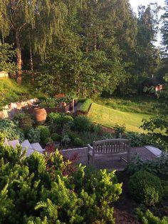 Här kommer några fler bilder från vår privata trädgård. Vill visa er att en grässlänt kan förvandlas till en köksträdgård. Lådorna står på gårdsgrus och runt dem växer en ligusterhäck som vi klipper tre gånger om året. Vi påbörjade arbetet i September-2012.