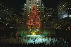 Check out this list of the most popular and celebrated holiday trees in New York City, including options all over town and even one that's decorated with origami.