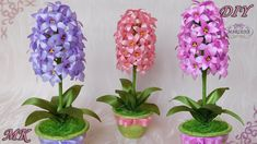 INTERIOR FLOWERS. HYACINTH FROM THE TAPE. Gift with your hands DIY