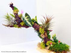 Tillandsia air plant sculpture. SOLD.