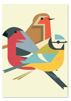 Ornithology Prints from www.crayonfire.co.uk
