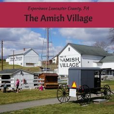 Experience The Amish Village, Lancaster County, PA Experience The Amish Village in Lancaster, PA via Dc Travel, Summer Travel, Family Travel, Places To Travel, Places To Go, Travel Tips, Travel Destinations, Family Trips, Vacation Places