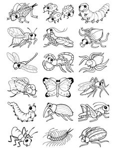 Welcome to Dover Publications Color your own Bug Stickers is part of Bug coloring pages - Insect Coloring Pages, Spring Coloring Pages, Coloring Book Pages, Coloring Pages For Kids, Coloring Sheets, Adult Coloring, Bug Crafts, Animal Projects, Art Projects