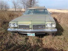repin: 1973 Oldsmobile Custom Cruiser