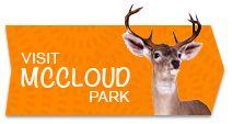 Hendricks County Parks > McCloud Park