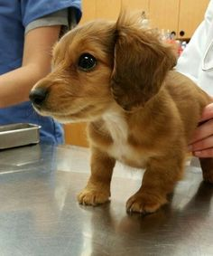 """Ummm…heh…whatcha got there?"" 