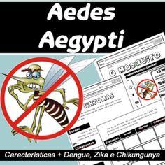 Código 543 Aedes Aegypti