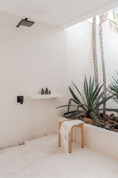 Loft Bathroom, Bathroom Interior, Bali, Interior And Exterior, Interior Design, Tadelakt, Minimalist Interior, Minimalist Room, Shower Remodel