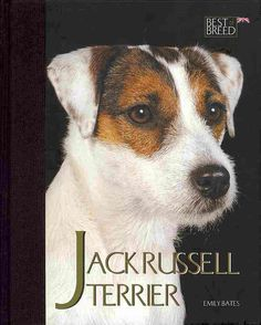 The Jack Russell is one of the most popular breeds of dog, and here at last is a book to do it justice. The 'Best Of Breed' series is a ground-breaking truly breed specific book, from the first page t