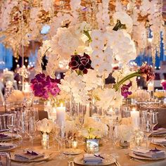 Super chic, stylish, sexy, high fashion bundled into one ! Florist: @tantawanbloom #weddinginspo . . . #ido #wedding #bride #luxurywedding #bridetobe #weddingideas #weddingplanning #gettingmarried #eventdesign #futuremrs #weddinginspiration #weddinginspo #bridalinspo #luxuryweddings #instabride #weddingfashion #weddingdecor #orchids #lightingdesign #igdaily #weddingbells #specialoccasions #weddinggown #bridalstyle #beyondwonderland #bridalfashion #weddingday #StrictlyWeddings