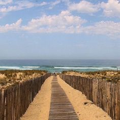 #mimizan  #mimizanplage  #ocean  #sable  #landes  #dune Accès à la plage avec une vue magnifique