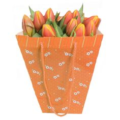 This collection of orange tulips is a timeless classic. Beautifully presented in gift bag makes this a perfect gift for Mothers Day. £25