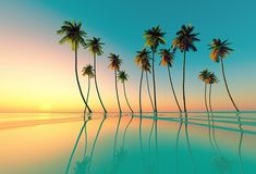 Shop for Coconut Palms Wallpapers in Nature & Landscapes Theme Wallpapers. Custom printed to fit your walls. Free Shipping in India.