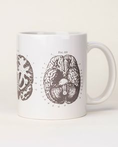 Brain Anatomy Mug | Gray White Ceramic Coffee Mug, Medical Doctor Gift, Neuroscience, Present for Smart Person, Nursing Science Biology Tea by CognitiveSurplus on Etsy https://www.etsy.com/listing/481682615/brain-anatomy-mug-gray-white-ceramic Nurse Gifts, Nursing Students, Medical Doctor, Science Biology, James Anderson, Brain Anatomy, Doctor Gifts, Smarty Pants, Cute Mugs