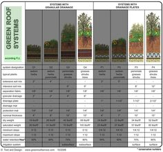 Intensive Green Roof Systems