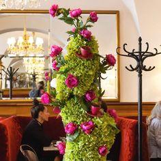 Vienna, Old Things, Instagram, Decor, Decorating, Dekoration, Deco, Decorations, Deck