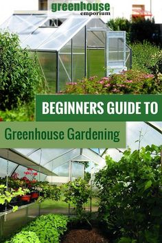 Awesome Greenhouse Design Layout Information Is Available On Our