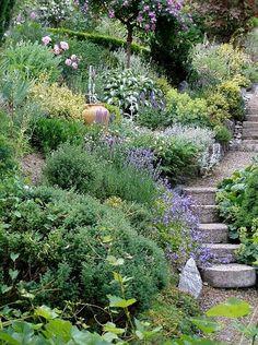 Image result for Easy Steep Slope Landscape Ideas