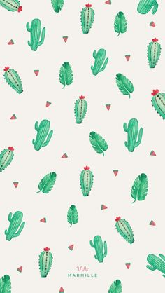Wallpaper, cactus, and background image Tumblr Backgrounds, Cute Wallpaper Backgrounds, Modern Wallpaper, Cute Wallpapers, Wallpaper Ideas, Summer Wallpapers Tumblr, Cactus Backgrounds, Wallpaper Decor, Phone Wallpaper Images