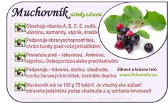Muchovník - čo to je, čo obsahuje, načo je vhodný? | Peknetelo.eu Fruit Facts, Raw Food Recipes, Healthy Recipes, Detox, Wellness, Weight Loss Smoothies, Food Art, Natural Health, Healthy Lifestyle
