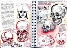 Drawing skulls in the British Museum. www.duncancameron.org