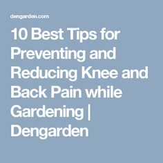 10 Best Tips for Preventing and Reducing Knee and Back Pain while Gardening | Dengarden