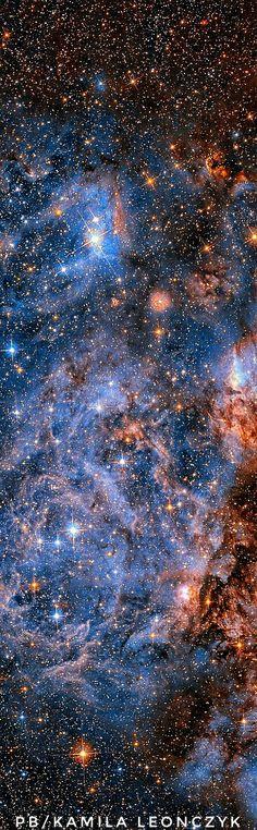 Nebulas in the Large Magellanic Cloud Image Credit: NASA, ESA, Hubble Space Telescope Cosmos, Space Photos, Space Images, Nasa Space Pictures, Hubble Pictures, Hubble Images, Eclipse Solar, Across The Universe, Andromeda Galaxy