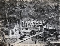 Kentucky Moonshine Still, 1909