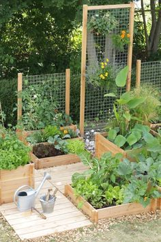 Vertical wire is another great option for a garden trellis. Attach sticks on either end to stake into the ground and put on the edge of whichever plants need a little help. If you have a privacy fence in your backyard, this idea will spruce up the space w #gardeningideas